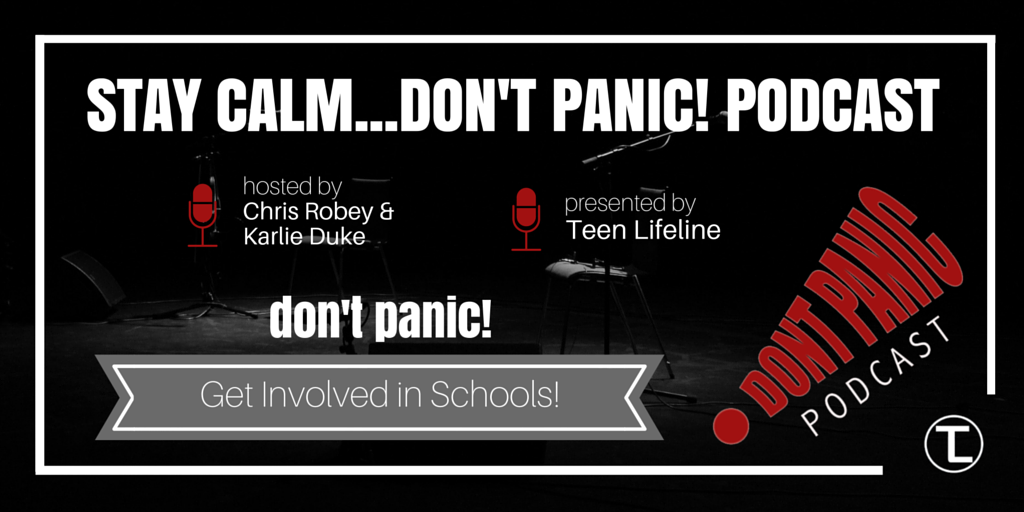 Don't Panic – Get Involved in Schools!
