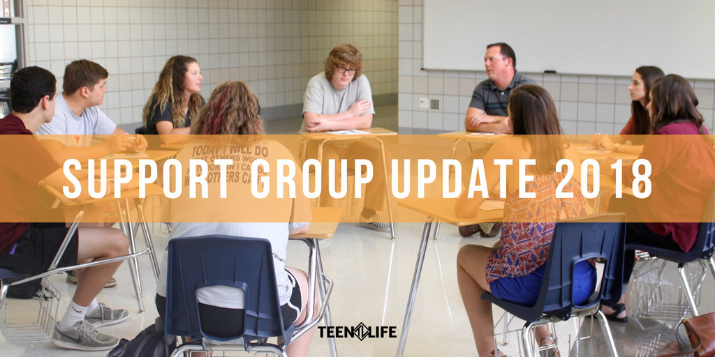 Support Group Update 2018